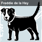 Freddie2_1483372a