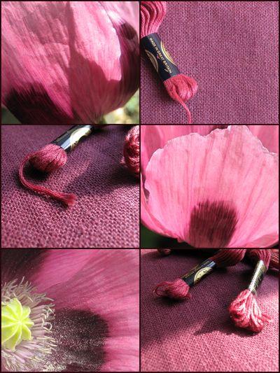 Poppy, linen