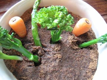 soil & veg