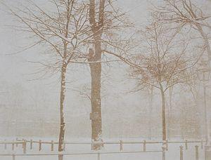 Snow - calotype - Owen