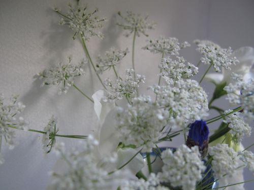 Blue & white 3