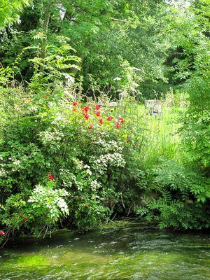Hampshire fishing garden