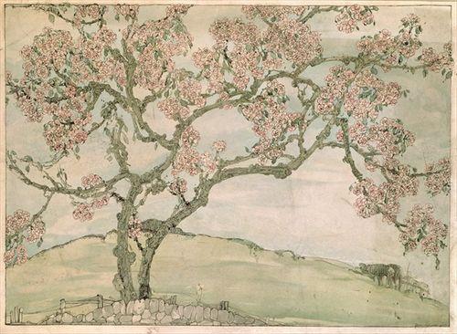 Jessie M King apple blossom