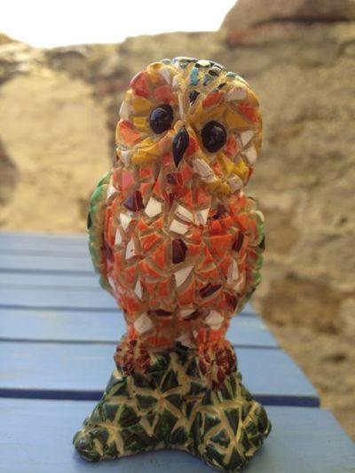 Cornflower_Owl