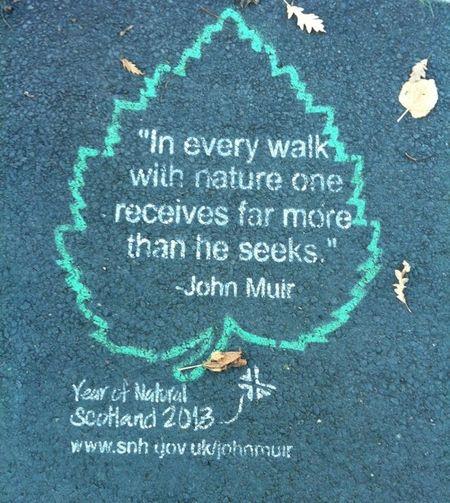 John Muir, Year of Natural Scotland