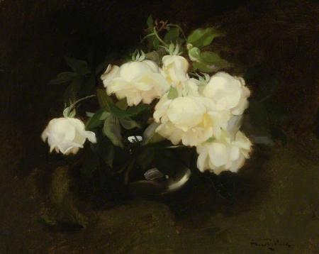 Roses  Stuart Park