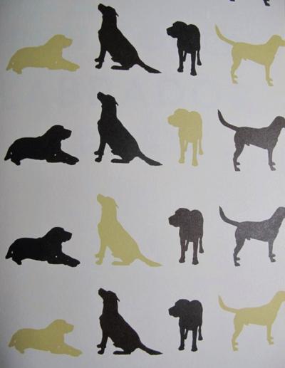 Labrador Ben Fogle endpaper