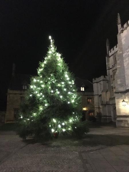 Magdalen Christmas tree