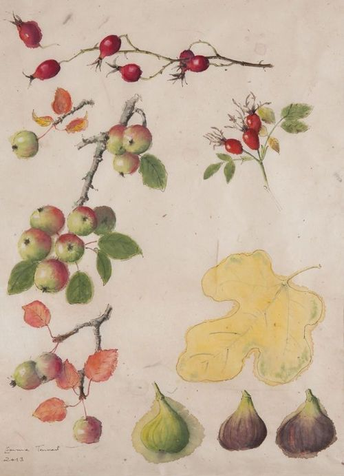 Crab Apples, Rose Hips and Figs, Emma Tennant