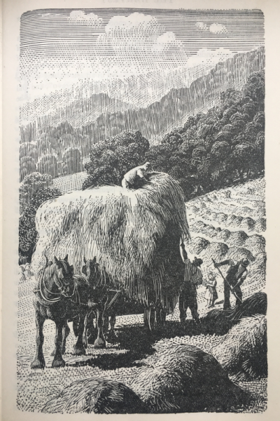 The Harvest, The Country Child