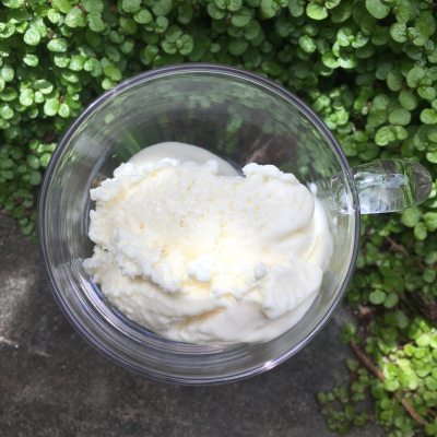 Rice pudding ice cream