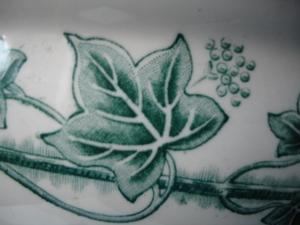 Cornflower_27_048